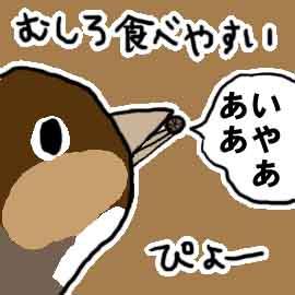 ダンゴムシと私_挿絵1