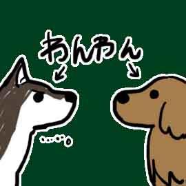 犬と狼の違いとは何か…親戚?祖先?_挿絵1