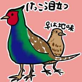 有名な鳥10選_挿絵1