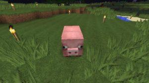 Ars Magica2の魔法を習得するための準備を始める(第36話):Minecraft_挿絵7