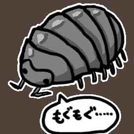 ダンゴムシちゃんの大好物_挿絵1