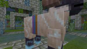 後顧の憂いを絶ちつつ、高地の下のトロールの洞窟へ(第76話):Minecraft_挿絵6