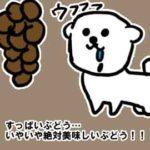 犬にあげちゃいけない意外な食べ物たち_挿絵1