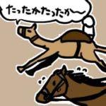 ドバイで本当に伝統的なのは…競ラクダ(競駝)_挿絵1